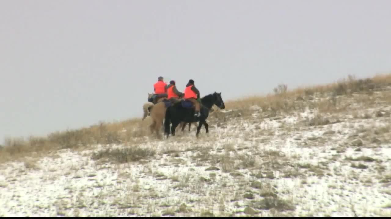 Montana Outdoor Report: Beartooth Game Range
