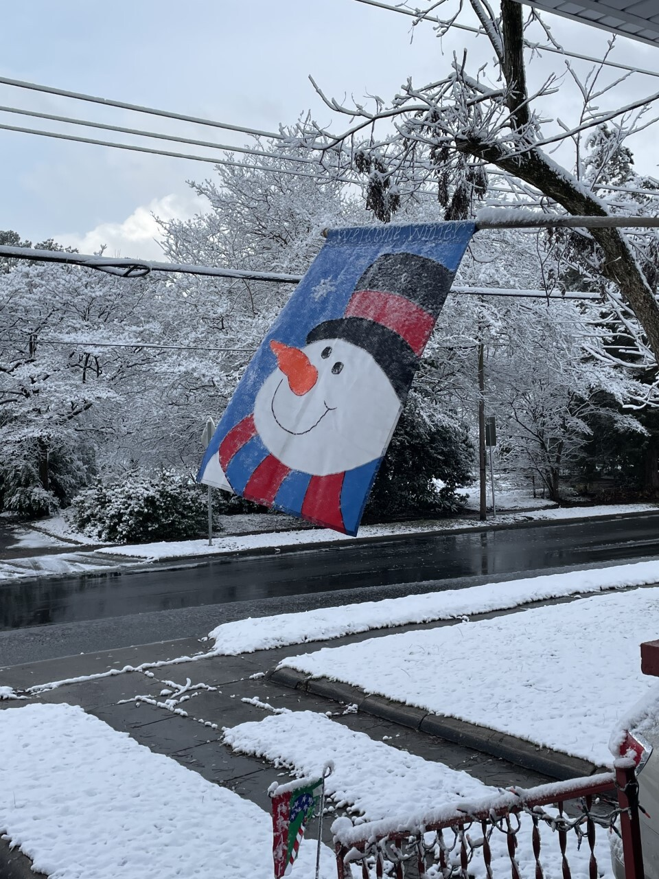 snow 2021 deborah chavis.jpg