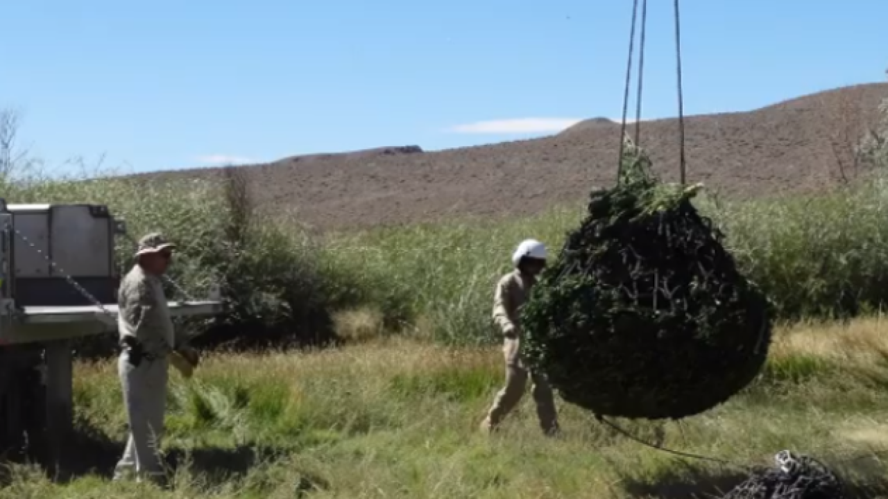 Tip leads to largest drug bust in Nye County
