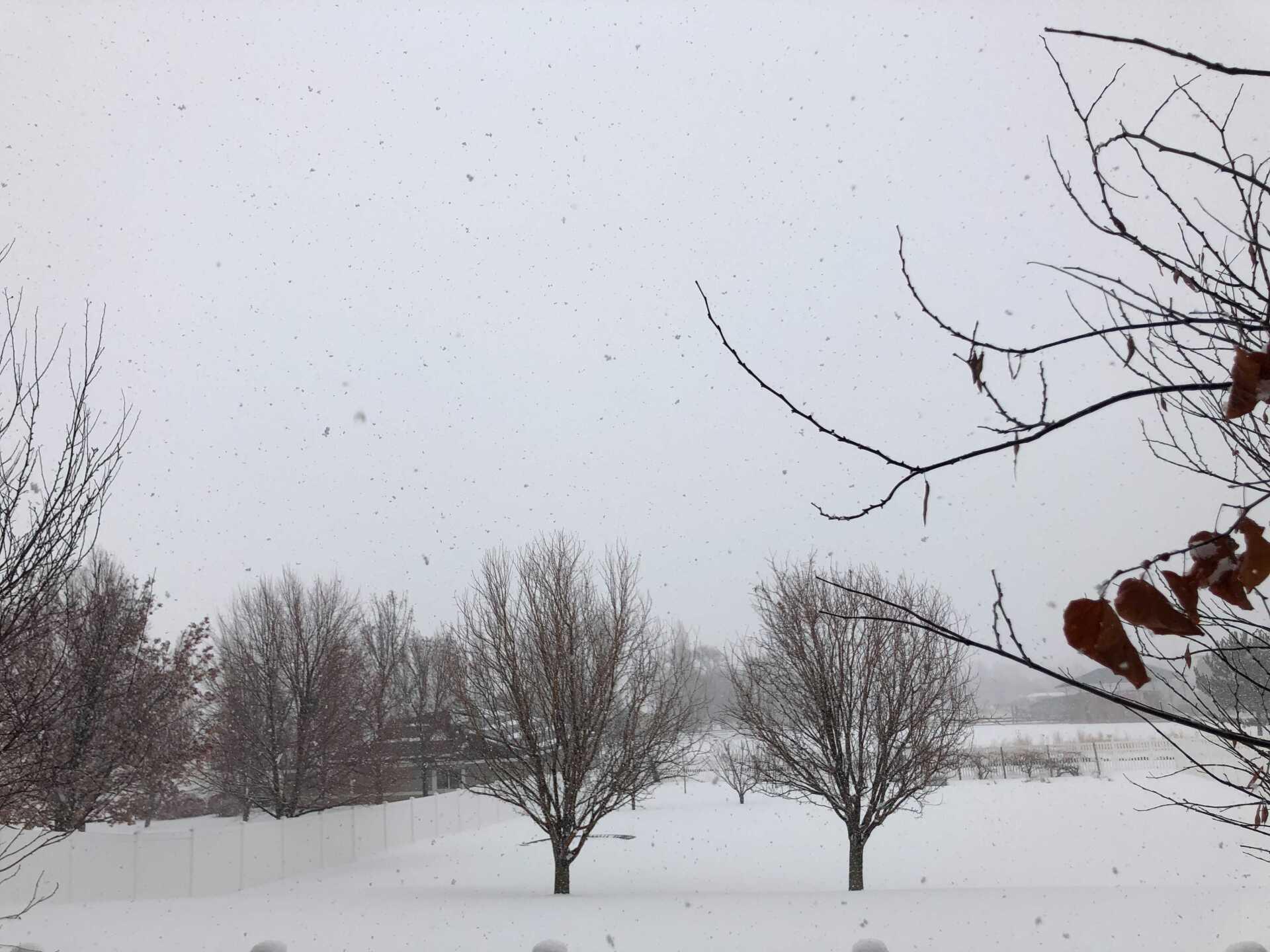 Snow Friday (6).jpg