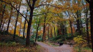 Holden Arboretum4.jpeg