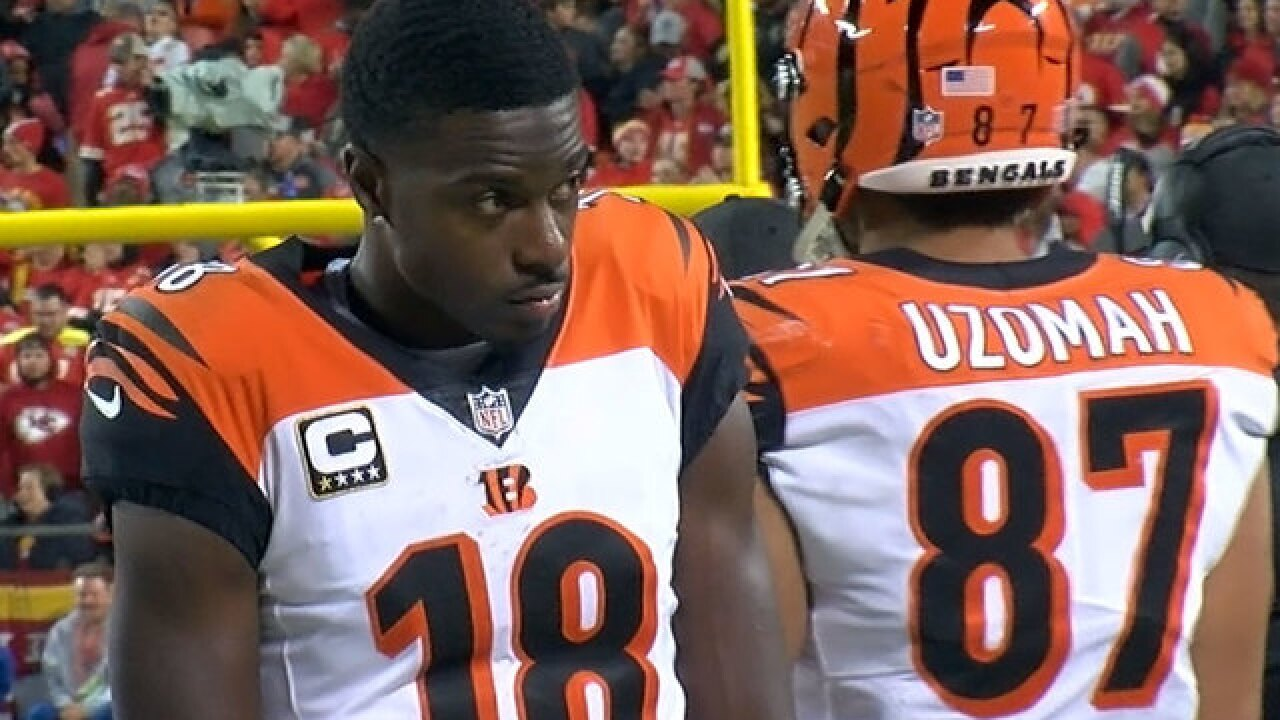 Flying Pigskin: Midway through season, Bengals have reasons to be both happy, worried