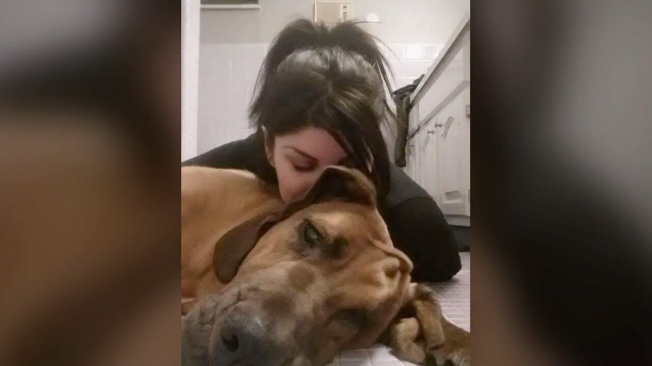 Army private tracks down her missing bloodhound, but family refuses to return him
