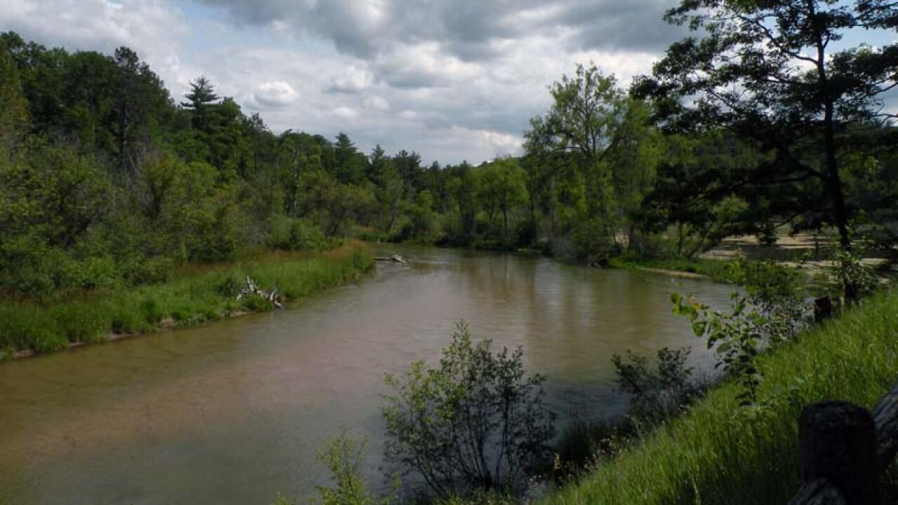 pine river web.jpg