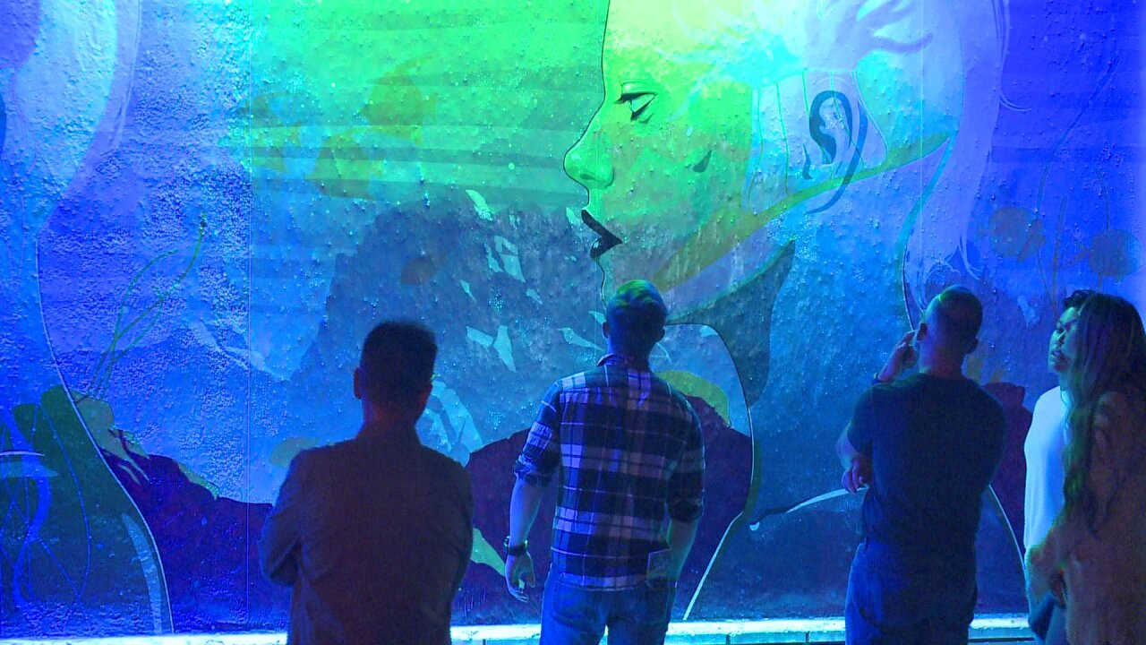 NEON Festival returns to Downtown Norfolk for fifthyear