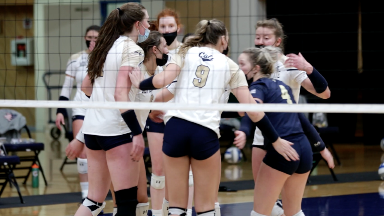 Montana State Volleyball