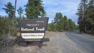 Prescott National Forest.jpg