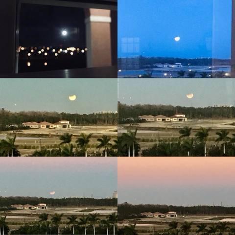 PHOTOS: Super blue blood moon makes an appearance over Southwest Florida Jan. 31