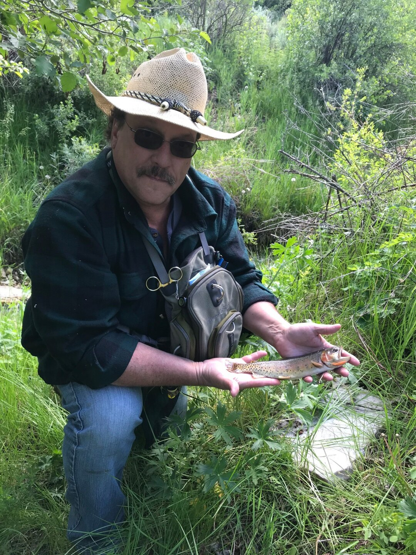 Yellowstone Cutthroat trout.jpg