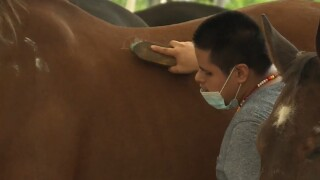 A man takes part in equine therapy at the Herd Foundation Equestrian Center in Delray Beach on Sept. 10, 2021.jpg