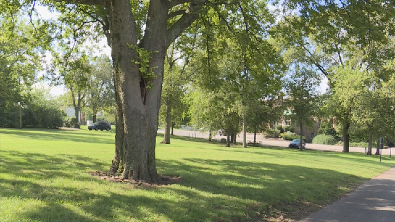 'Nashville Tree Foundation' Hand-Out Free Trees To Davidson County Residents