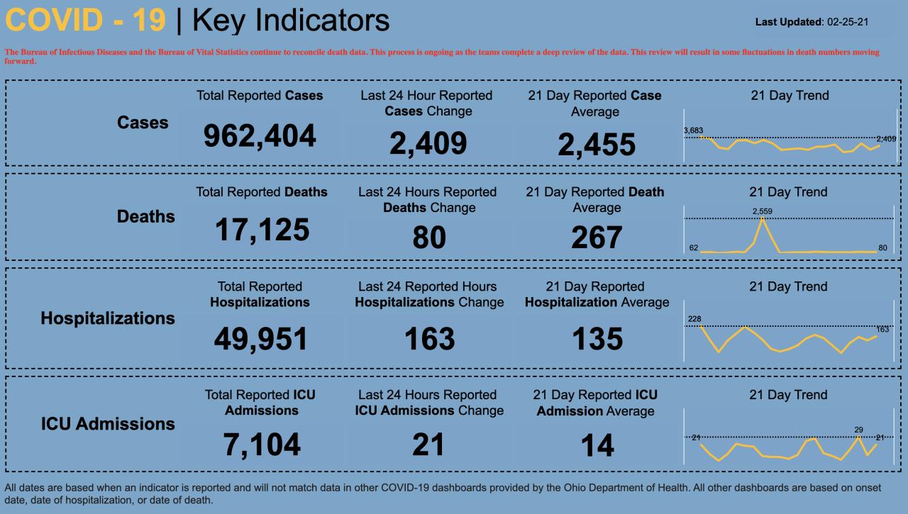 2/25/21 CV key indicators
