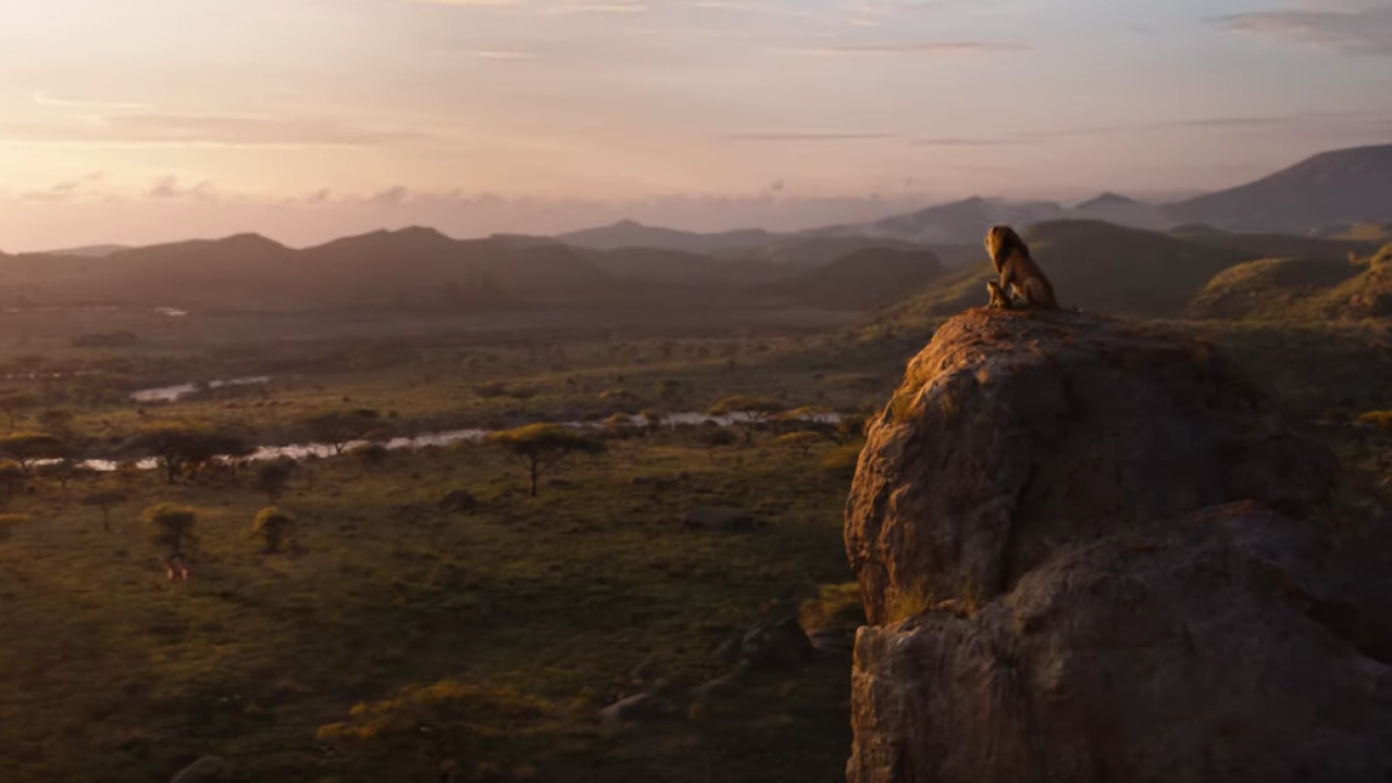 Watch The New Full Length Trailer For Disneys The Lion