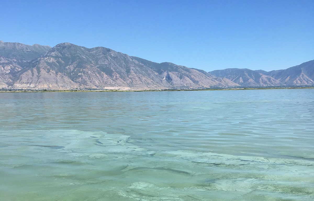 Photos: Time Lapse: Utah Lake closed because of toxic algaebloom