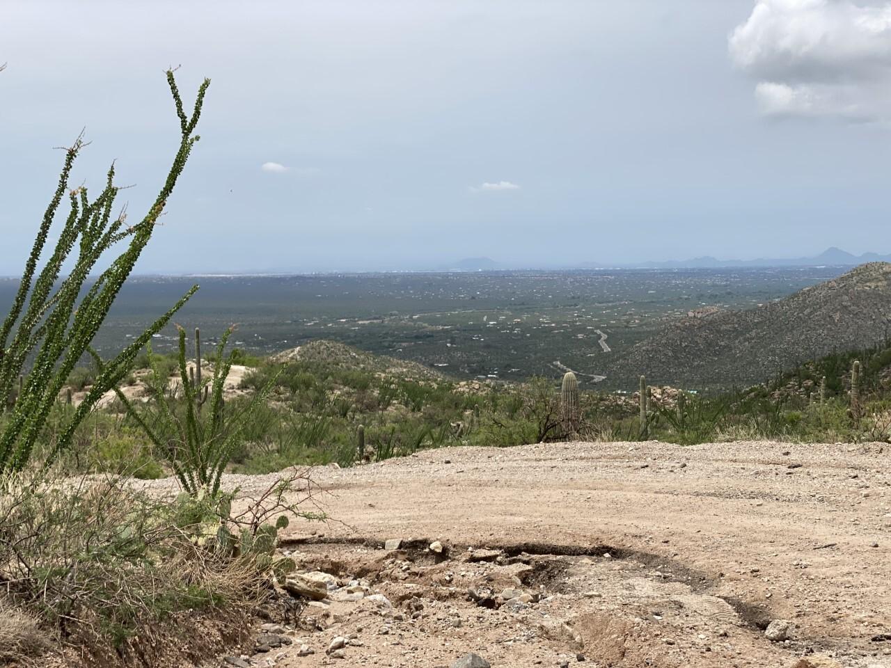 View into Tucson from Redington Pass
