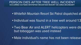 1 person dies in tree well incident near Whitefish Mountain Resort