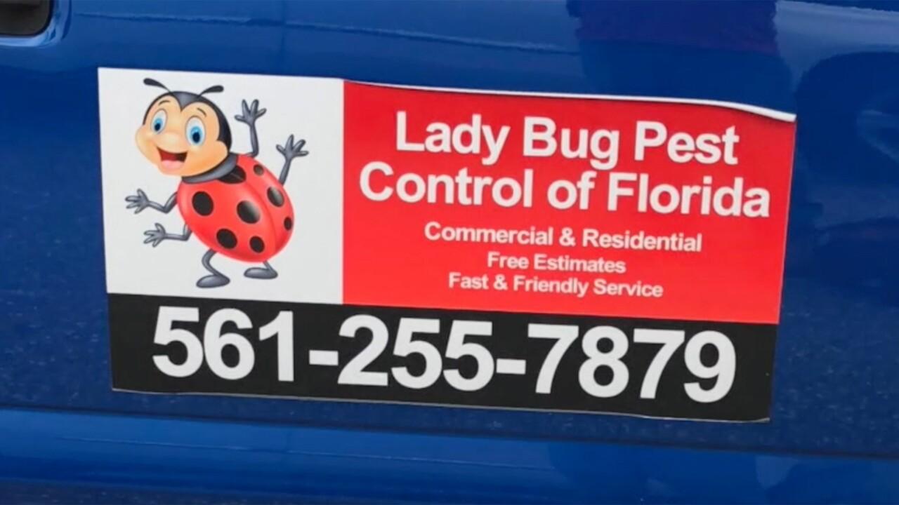wptv-lady-bud-pest-control2.jpg