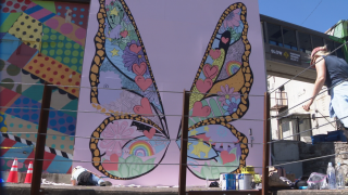 butterflywings.png