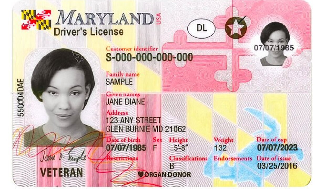 maryland driver's license.jpg
