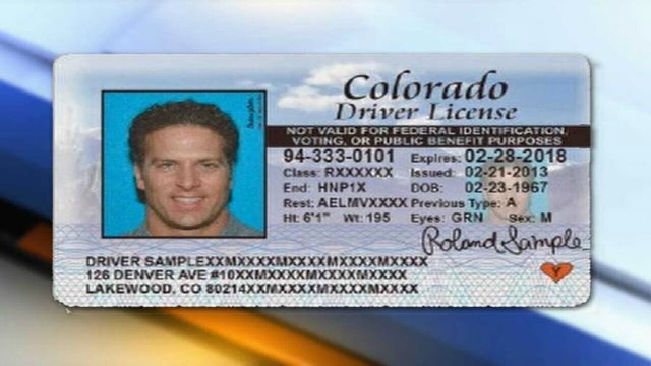 drivers license office colorado springs co