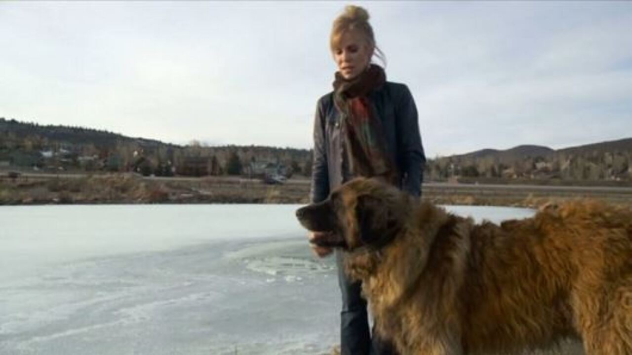 Utah woman who rescued dog after fall through ice: 'I have no idea how I had the strength'