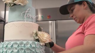 The Cake Girl, Tampa