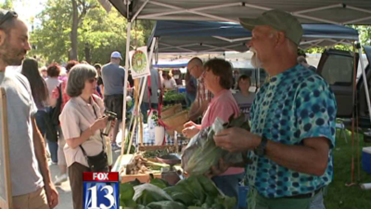 Program allows shoppers to use food stamps at farmers markets