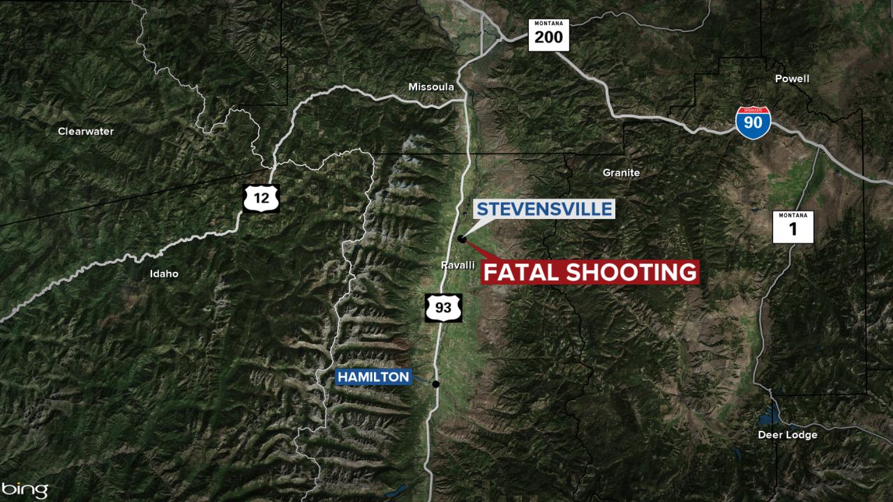 Stevensville Christmas Homicide.png