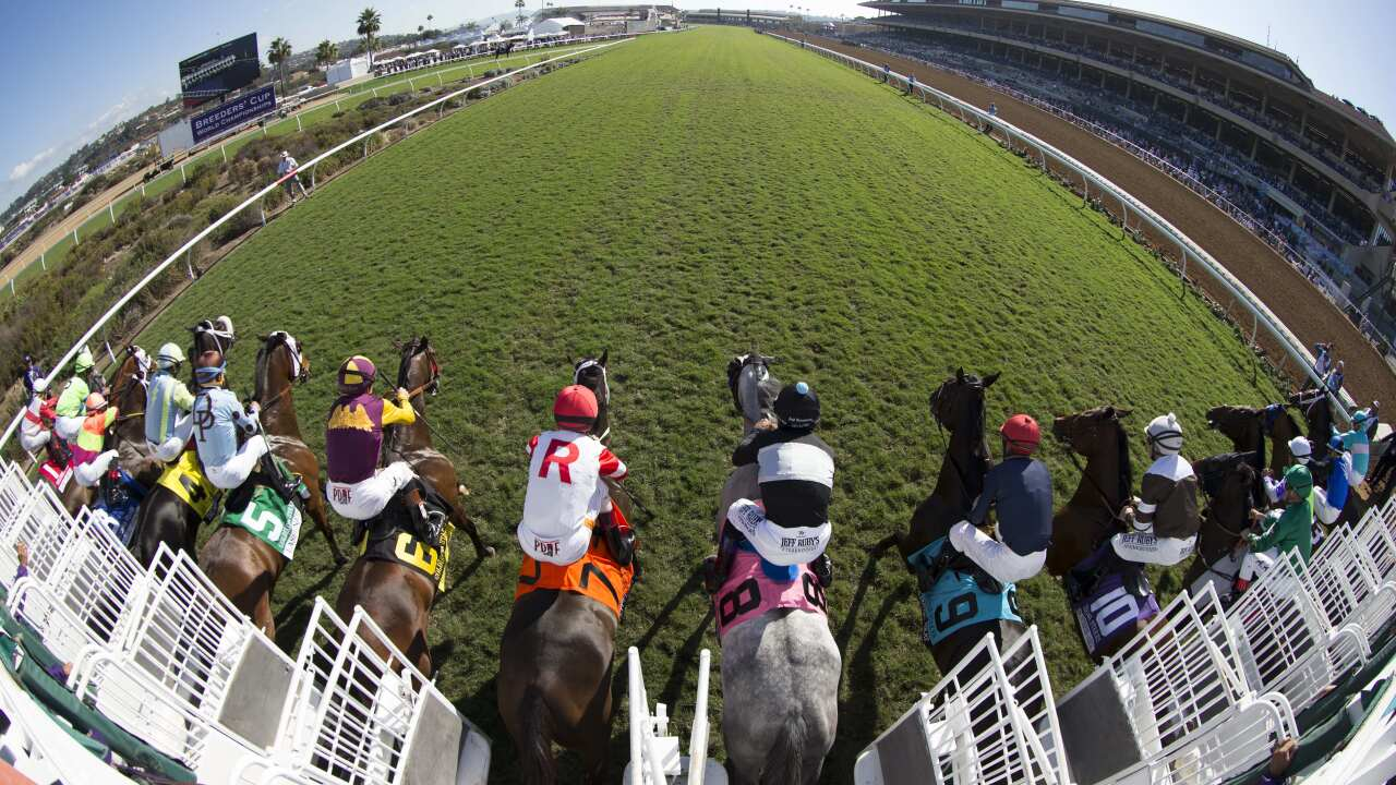 2017 Breeders' Cup World Championships at Del Mar - Day 2