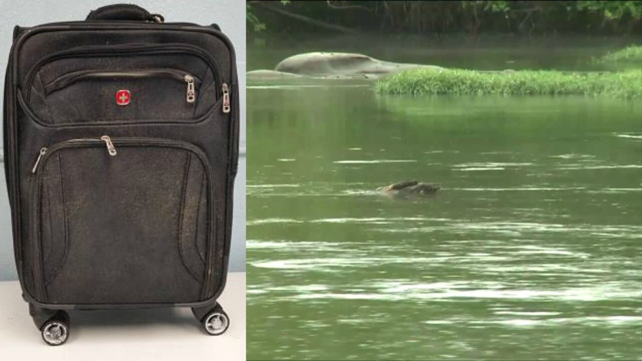 Puppy with 'traumatic abuse' found dead inside suitcase thrown in JamesRiver