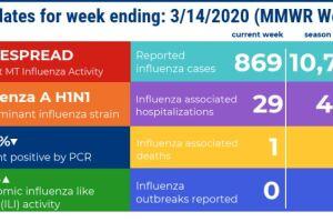dphhs flu week 11.jpg