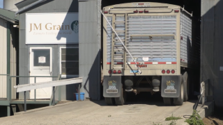 Montana Ag Network: Major pulse company files for bankruptcy ahead of 2019 harvest