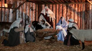17th Annual Miracle of Christmas-Live at the Zoo