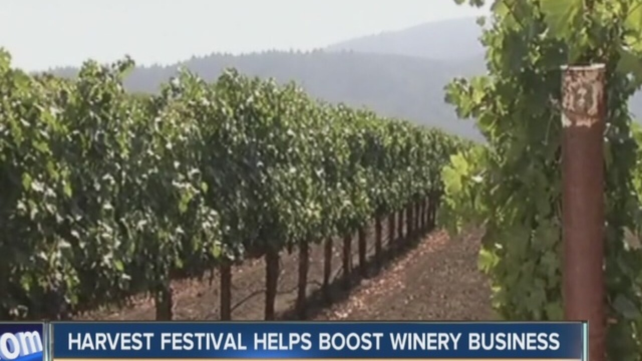 Wineries welcome fall with Harvest Festival