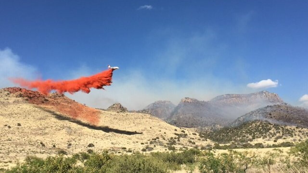 Nearly 300 firefighters battle Pinery Fire