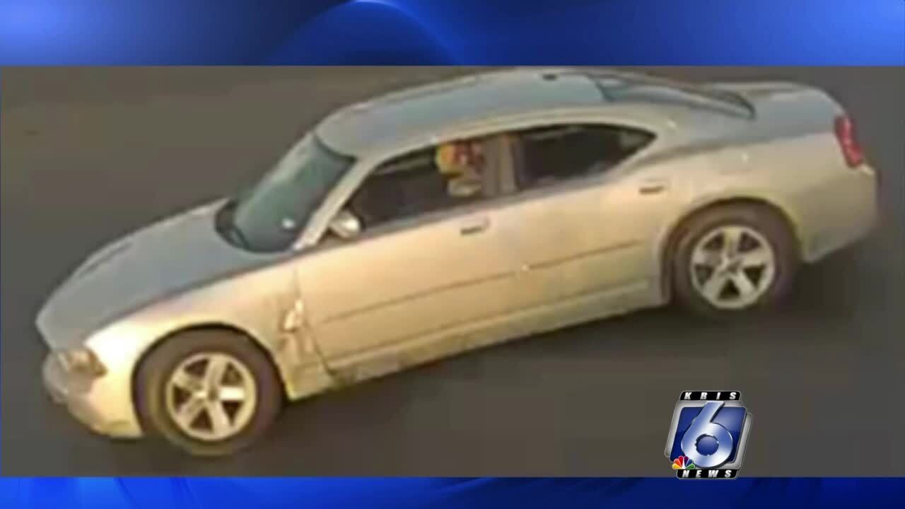 Suspected hit and run driver