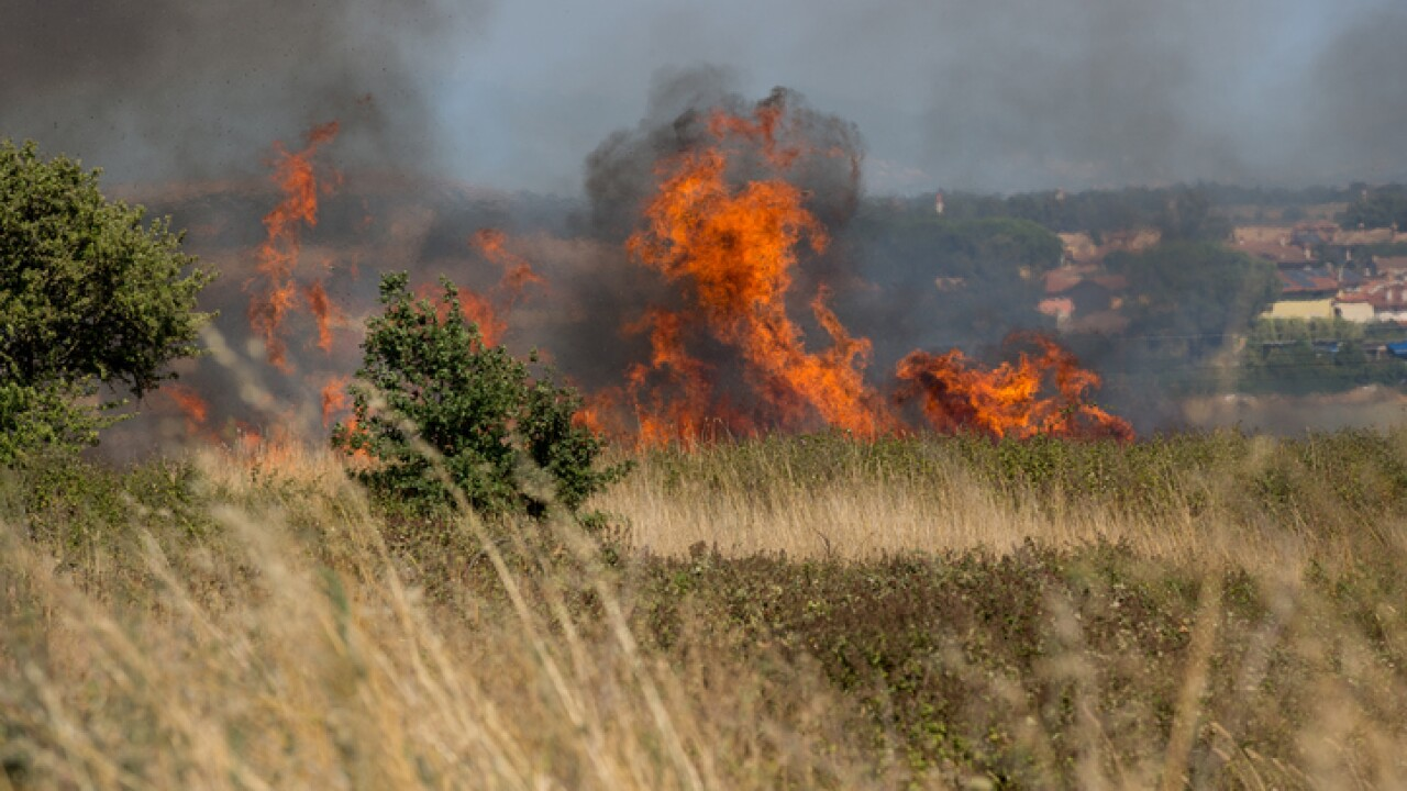 Officials: People caused brush fire near Yorktown Battlefield