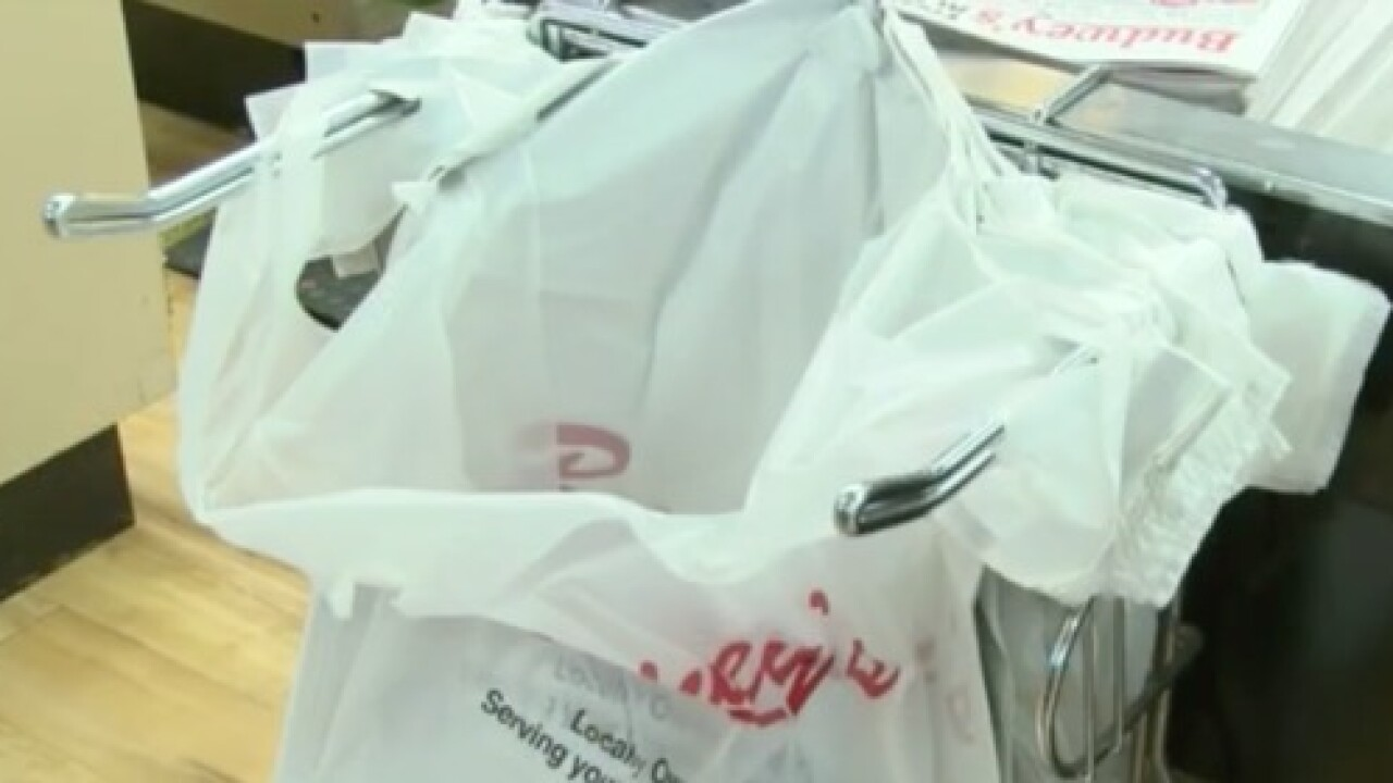 8 solutions to address plastic bag waste in NYS