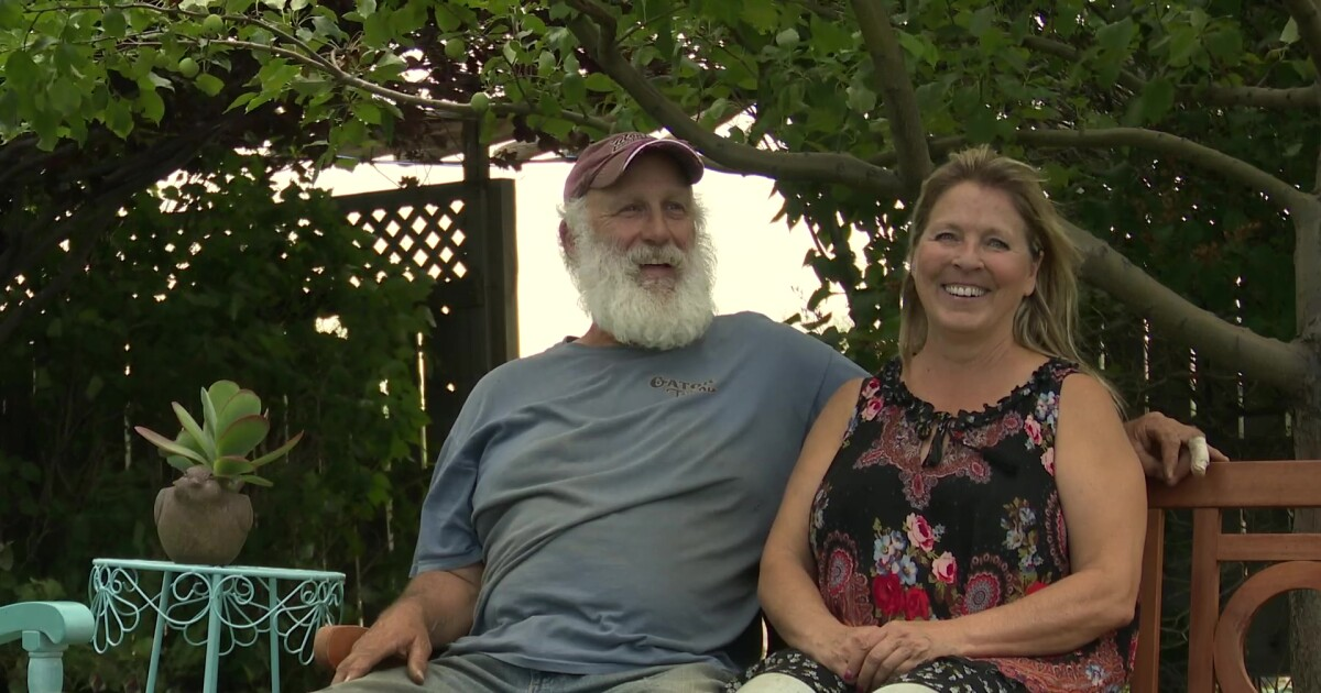 Marias Greenhouse is celebrating its anniversary with a community garden party