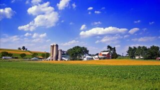 US Farmers Expected to See 32 Percent Drop in Income in 2015