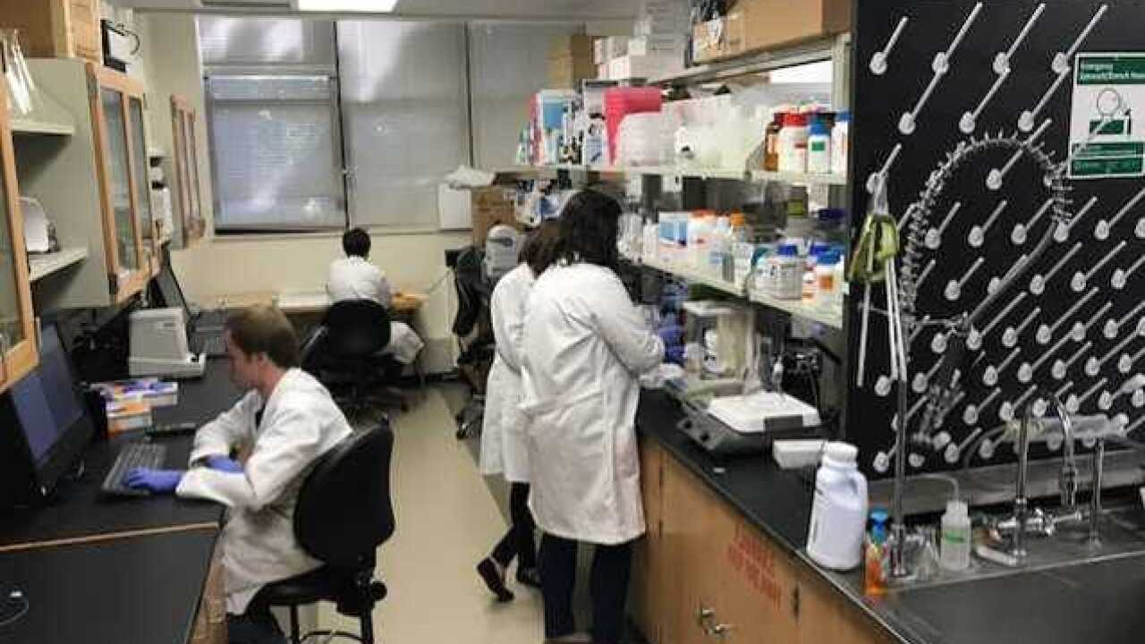 Milwaukee researchers work toward cure for Alzhe