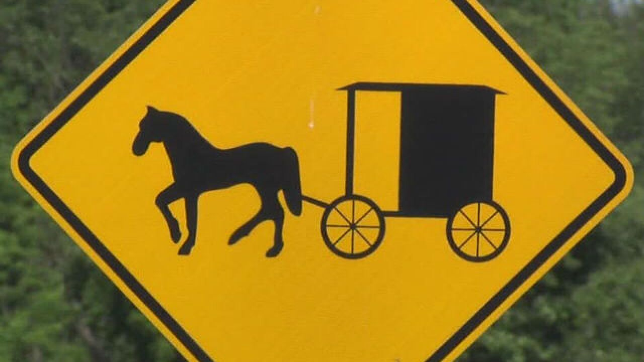 1 killed, 2 hurt in Amish buggy, SUV crash