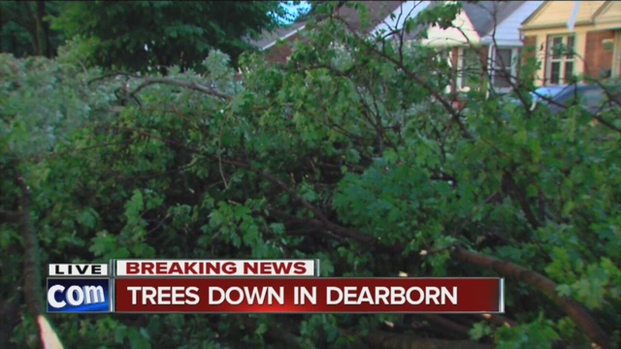 Trees down in Dearborn after storms roll through