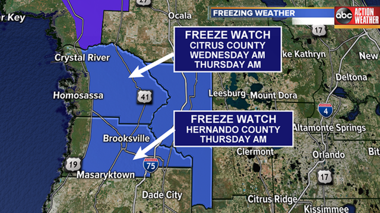 Freeze watches issued for parts of Tampa Bay Area through Thursday morning
