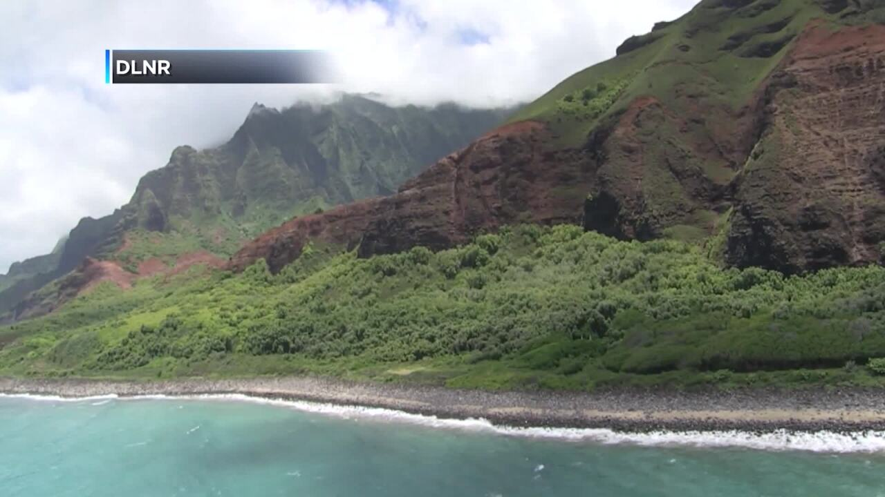Hawaii DLNR helicopter search