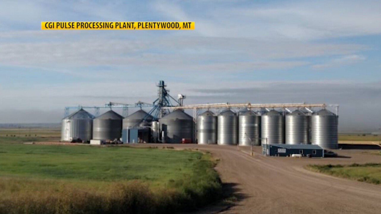 Montana Ag Network: Columbia Grain meeting demand during pandemic