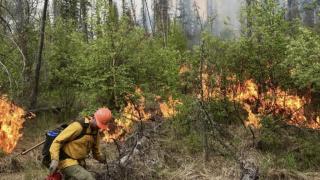 Helena hotshot crew helping fight largest Alberta wildfire