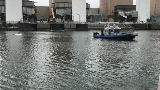 Long Island Sound 5 rescued