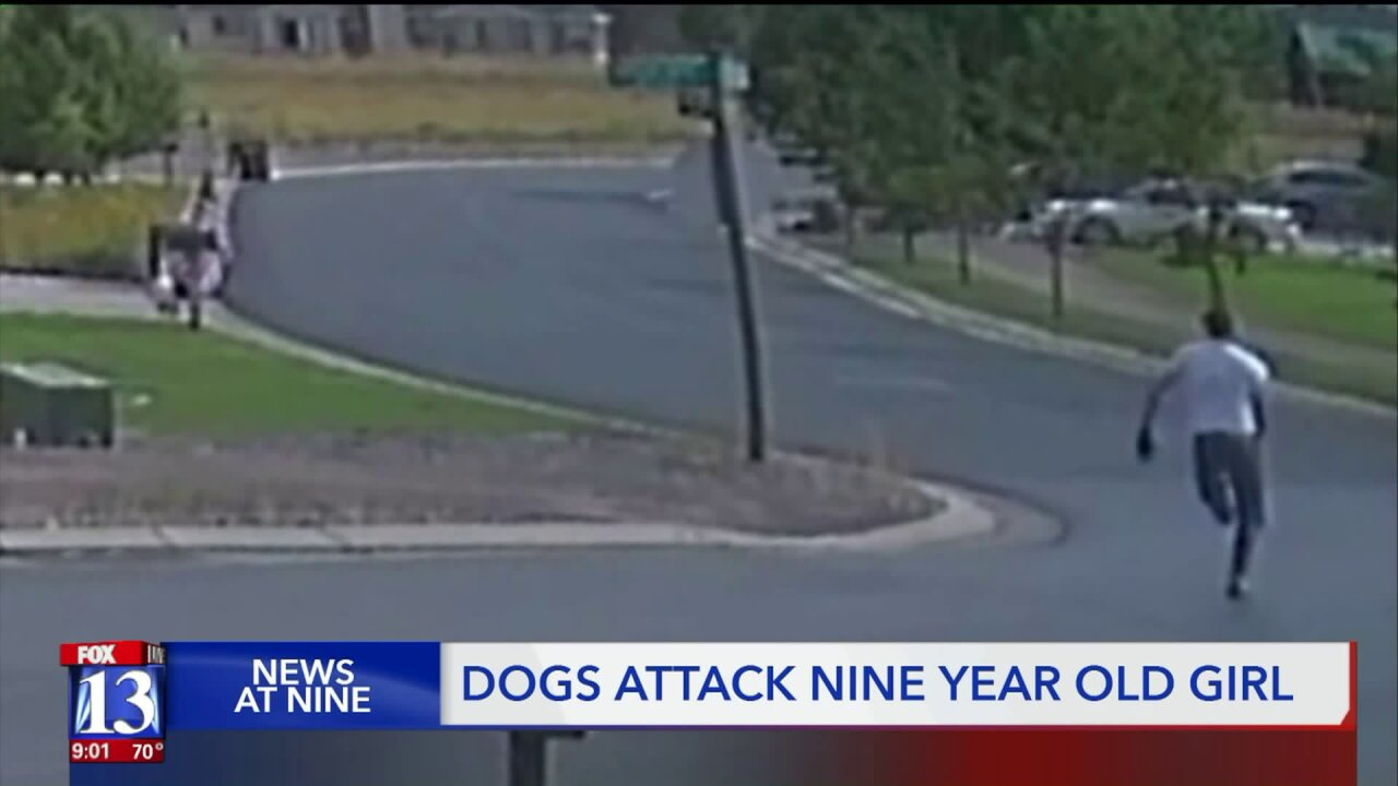 Girl, 9, attacked by two dogs in EagleMountain