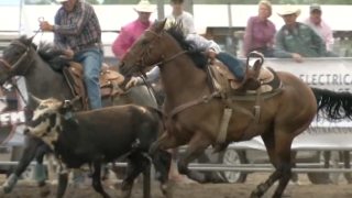Last Chance Stampede and Fair kicks off Wednesday